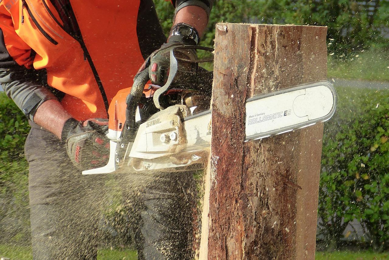 Häufig Baumfällarbeiten: Kosten & Vorschriften 2019 JK98