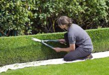 Wie hoch fallen die Gartenpflege Kosten pro Stunde aus?
